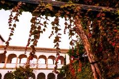 Granada_edit (5 of 10)